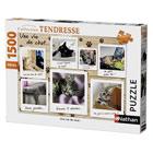 Puzzle 1500 pièces chatons