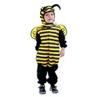 Déguisement abeille 3/4 ans