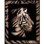 Scraper tigre avec frise