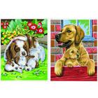 Peinture aux numéros - Duo chiens malins