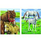 Peinture aux numéros-Duo de chevaux