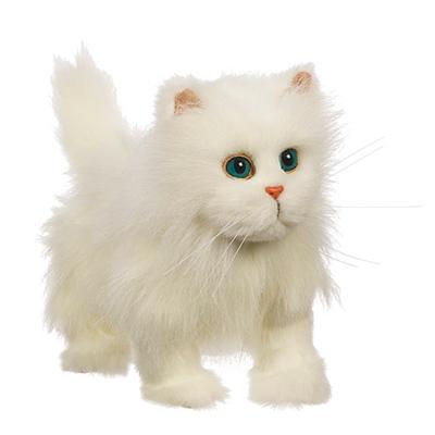 En avant mon petit chat-Blanc