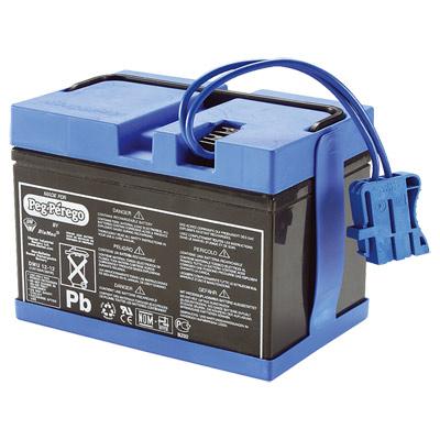 Batterie 12 volts 12 A