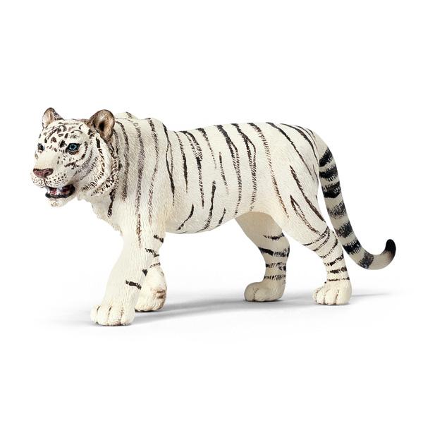 Tigre blanc mâle pour 6€
