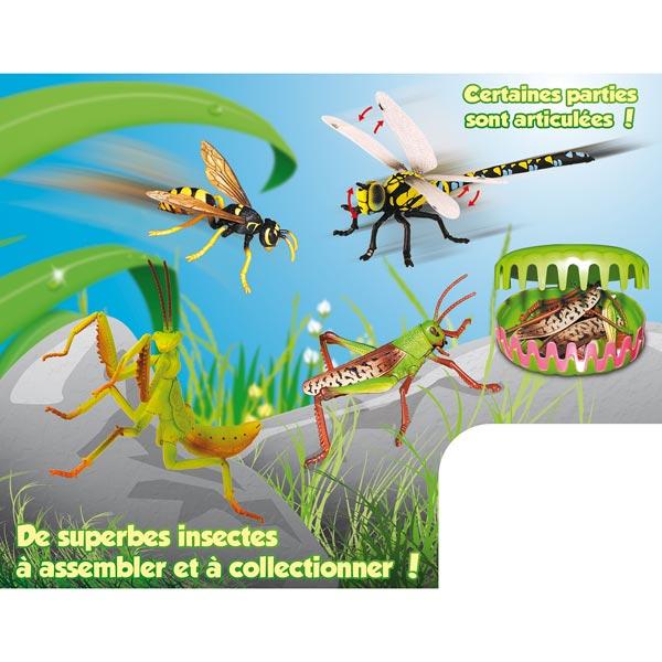 Insectes 3d à assembler et à collectionner pour 4€