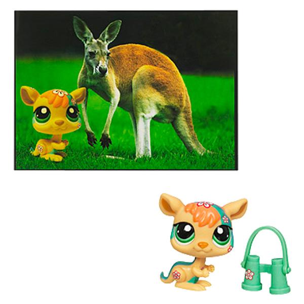 Petshop kangourou et carte postale pour 5€