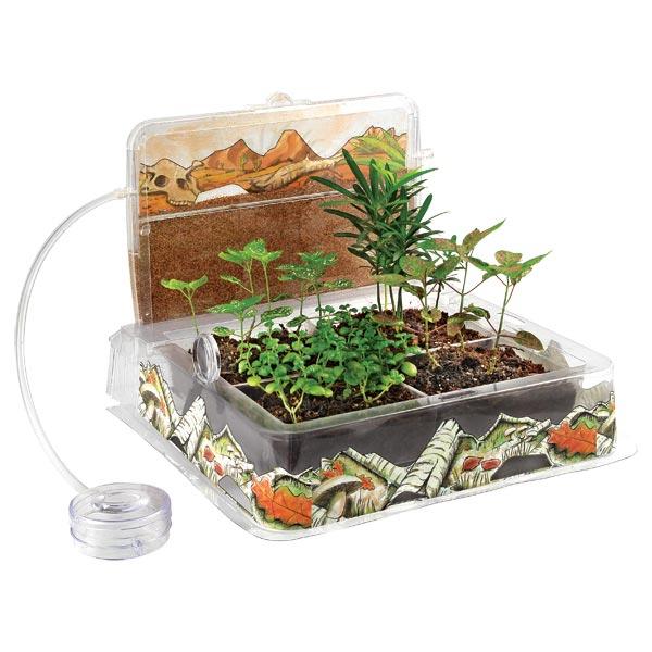 Kit d'observation des insectes et des plantes pour 20€