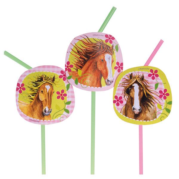 8 pailles chevaux pour 2€