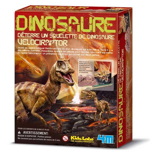 Dinosaure vélociraptor à déterrer