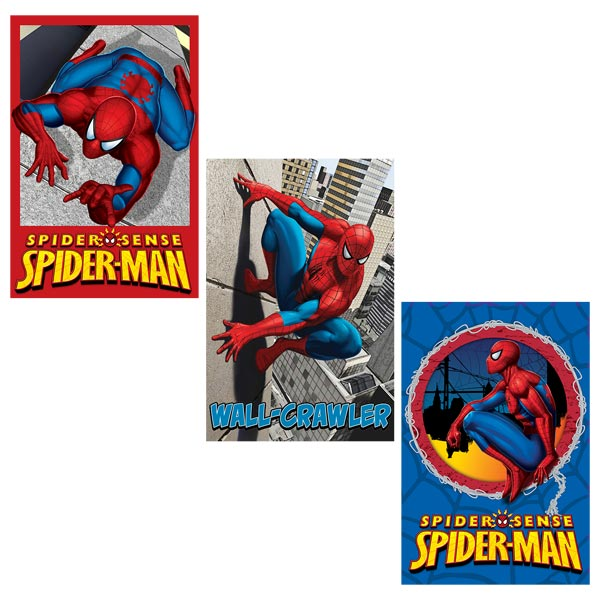 D coration chambre gar on spiderman for Decoration chambre spiderman