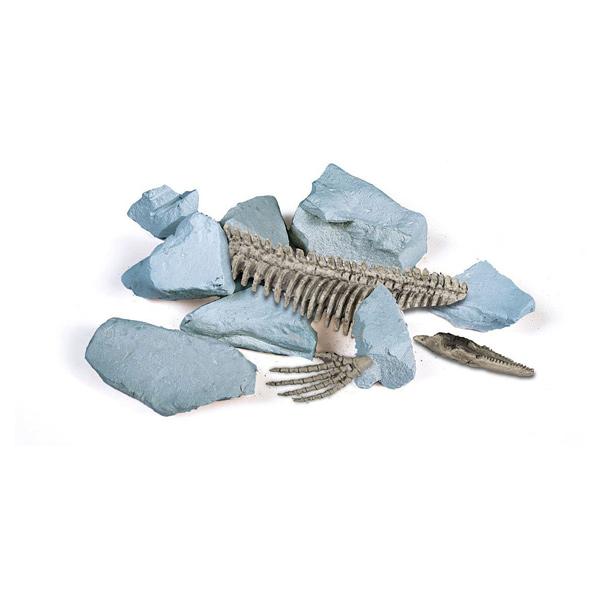 Kit Excavation Ice Age - Ours des cavernes
