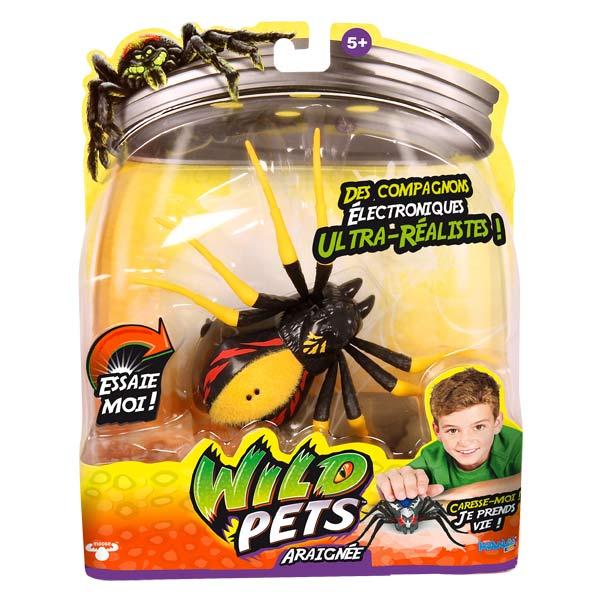 Direct jouets Jeux educatifs  Araignée veuve rouge kanaï kids