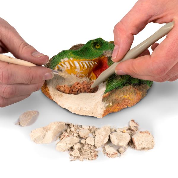 Kit de fouille fossiles de dinosaures