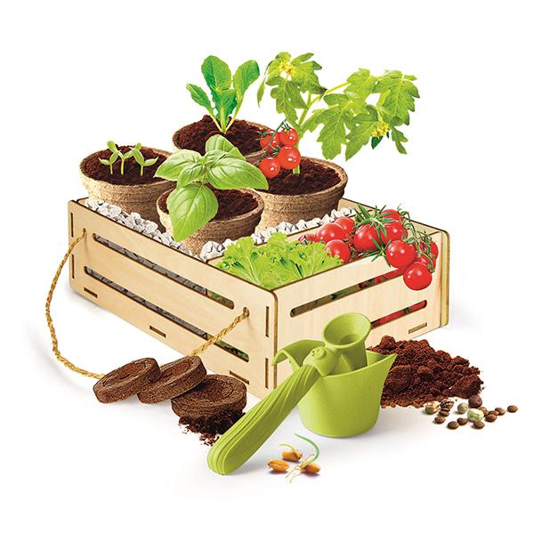 Coffret jardin et potager - Play For Future